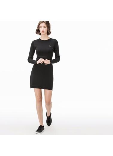 Lacoste Kadın  Elbise EF1903.03S Siyah